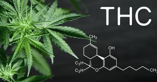 ¿Qué es el tetrahidrocannabinol y cuales son sus efectos?